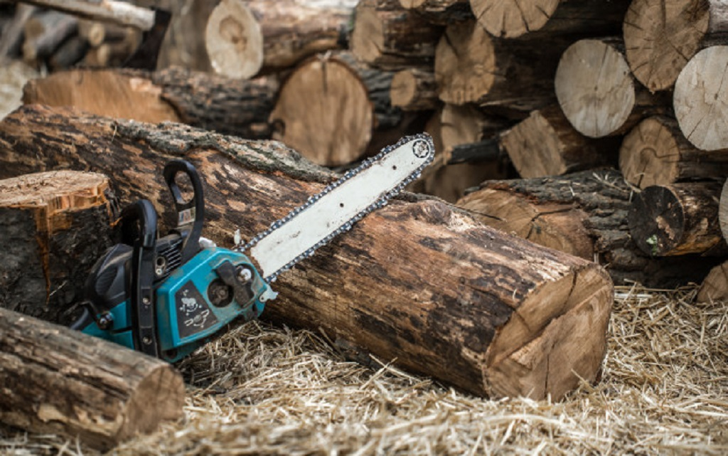 Why Chainsaws Were Invented